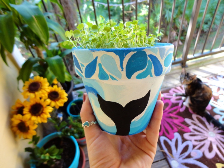 This is a pot i painted at the UNF Harvest Festival a few weeks ago. As you can see I had Orcas on my mind.